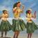 Hawaiian Mele Hula Mix Vol.1 image