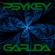 Secret Language (With Garuda - Forest Psytrance 148bpm) image