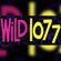 Wild 107 Mickey Fickey Mix 10-12-1996 image