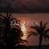 Balearica image