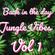 Jungle vibes Vol1 - Jonnie M image