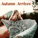 Autumn Arrives - a soothing soundtrack to the fall image