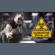 Quarantine Special FB LIVE MIX 2020425 image