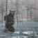 Vihma Päikest / Petit Bear image
