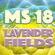 Metro Sessions Vol. 18: Lavender Fields image