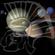 coliseum  history (93-97) image