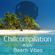 Chillcompilation #006; Beach Vibes 2013 image