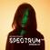 Joris Voorn Presents: Spectrum Radio 217 image
