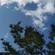 福州山のTrance image