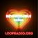PRIDE 2021 - LOOP RADIO presents INDEFATIGABLE image