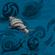 Solstice 2020 singing snails image