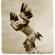 Let your heart soar - dance journey image
