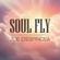 Soul Fly image