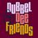 Dubbel Dee & Friends: Kristof Lauwers image