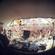 Captain Hook - live @ S.U.N Festival 2014 image