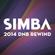 Simba - 2014 DNB REWIND image