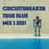 True Blue Mix 1 2021 image