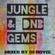 Jungle &  DnB Gems Mix - Dj Hovis image