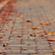 STEE DOWNES - AUTUMN MIX image