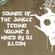 Sounds of the Jungle Techno Volume II image