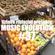 MUSIC EVOLUTION #37 image