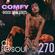 COMFY (DISCO-SOUL-EDITS) image
