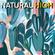 NATURAL HIGH! Nu Jazz, Beats, and Jazzy House! image