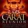 dj Franky Kloeck @ La Rocca - Carat Reunion 25-12-2013  image