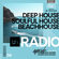Beachhouse Radio - April 2020 (Episode Four) - with Royce Cocciardi image