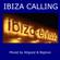 Ibiza Calling - Feel Good Summer House mixed by Allgood & Biglove image