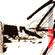 Complex Cognitive Material # 3 - Fango Radio Strips image
