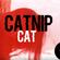 CATNIPCAT - RAREE AFTERPARTY MIX 10:00 image