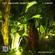 Paula Tape - Music for Plants ep.3 (Live on Radio Raheem)  image
