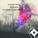 "Hayley Ball P.C. H Djs ""No Mercy for Delirium"" image"
