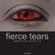 Fierce tears - progressive house mix image
