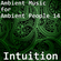 Ambient Music for Ambient People 14: Intuition image
