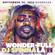 DJ SPINNA'S 'WONDER WROTE IT 2.5' image