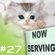 """""""NOW SERVING"""" Episode #27 (From the Rooter to the Tooter) image"""