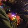 Bluestaeb (Jakarta records) • APC40 Live set • LeMellotron.com image