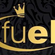 Fuel Mix for Our House 2016 image