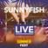 SunnyFish@Live Summer Fest 31-08-2018. image