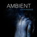 Ambient Experience image