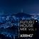 FUTURE HOUSE MIX vol.1 image