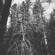 episode 015 - whatever. w/mikeymasonic wsg- lil jim - 2018-02-08 image