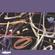 Lamusa II invite John Talabot - 25 Mai 2020 image
