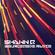 Shawn Q - Sourceqode Radio ep 04 image