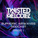 Euphoric Airwaves Podcast Episode 1 by Twisted Melodiez image
