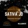 Telepsiquica Sessions @ Alliance Series 013 Sativa Jo image