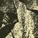 Musiques Oubliées (Forgotten Music) #3 - Jazz & Exotica image