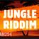 JUNGLE RIDDIM Street Vibe MIXTAPE[DJ FABIAN254] image